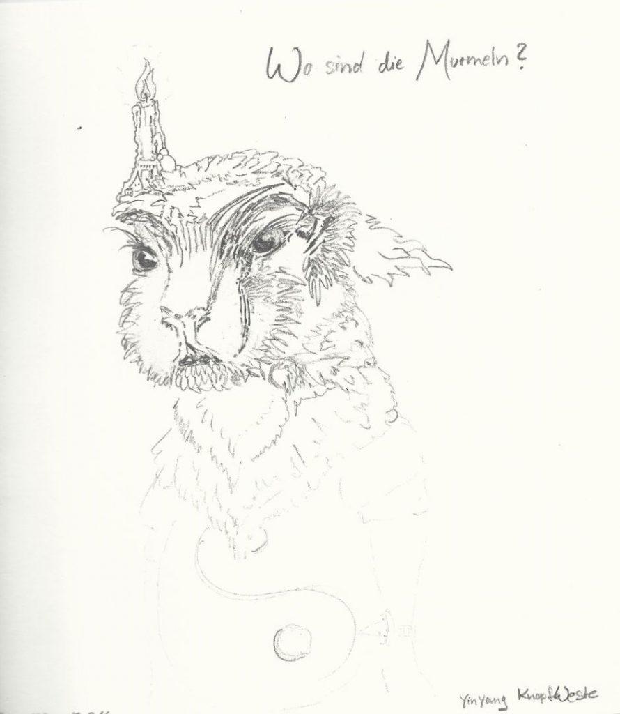 Nachtwächter Murmeltier - Zeichnung (Atelier am See, 02-2016)