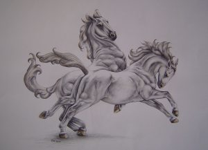 Pferde - 06-2005
